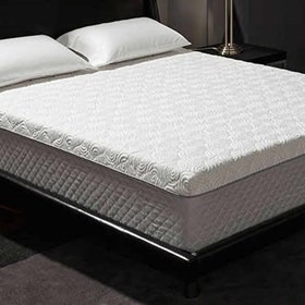 mold specialist: Novaform Mattress